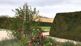 Blommor i formell trädgård av chateauen Lednice, Tjeckien arkivfilmer