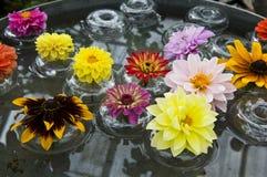 Blommor i Glass bunkar som svävar i vatten Royaltyfria Bilder