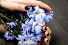 Blommor i händer för kvinna` s arkivfoto