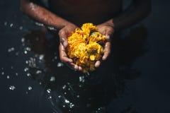 Blommor i händer som står i vatten royaltyfri fotografi