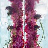 Blommor i isen Arkivbilder