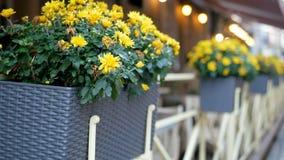 Blommor i korgar på staketet av ett kafé Fokusen av kameran flyttar sig mellan vaserna stock video