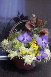 Blommor i korgen Fotografering för Bildbyråer
