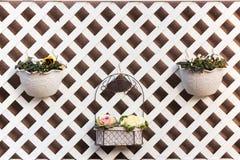 Blommor i korgen på en träingreppsvägg Royaltyfri Bild