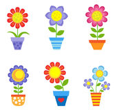 Blommor i krukar Fotografering för Bildbyråer