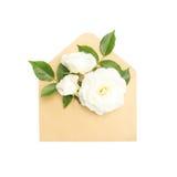 Blommor i kuvertet Royaltyfri Foto