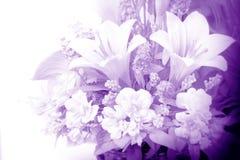 Blommor i lilor royaltyfri fotografi