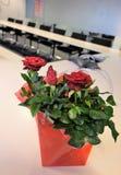 Blommor i mötesrum Arkivbilder
