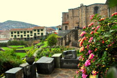 Blommor i Qurikancha Arkivbild