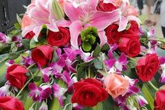 Blommor i regn Royaltyfri Bild