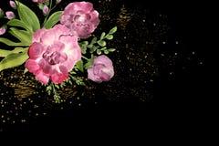 Blommor i sammansättning, bästa sikt, onblackbakgrund Rospioner Royaltyfria Bilder