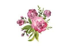Blommor i sammansättning, bästa sikt som isoleras på vit bakgrund pioner Royaltyfria Foton