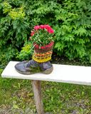 Blommor i sko Arkivbilder