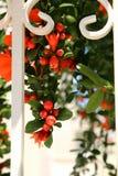 Blommor i staketet Royaltyfri Fotografi