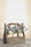 Blommor i träspjällåda Royaltyfri Foto