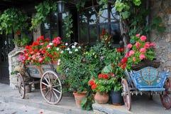 Blommor i vagnarna och plantersna Arkivbilder