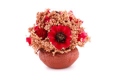 Blommor i vas Royaltyfri Foto