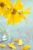 Blommor i vase Arkivbild