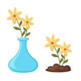 Blommor i vasvektor Arkivfoton