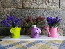 Blommor i vattencan Royaltyfria Foton