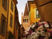 Blommor i Verona Arkivfoto