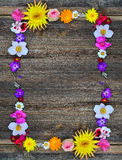 Blommor inramar på trä Royaltyfri Foto
