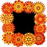blommor inramniner gjort geometriskt Royaltyfria Bilder