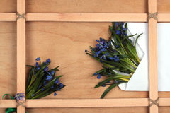 blommor inramniner trä Fotografering för Bildbyråer