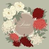 Blommor Krysantemum och pioner Vektortappningillustration blomma ramen blom- prydnad Klassiskt kort bostonian vektor illustrationer