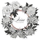 Blommor Krysantemum och pioner Vektortappningillustration blomma ramen blom- prydnad Klassiskt kort bostonian royaltyfri illustrationer