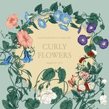 Blommor Loachesna Klassisk vykort i tappningstil Botanisk illustration blom- ramprydnadar Royaltyfria Foton
