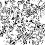 Blommor Loachesna Seamless bakgrund Arkivbilder