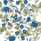 Blommor Loachesna seamless vektor för bakgrund Royaltyfri Foto