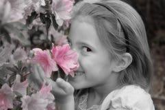blommor luktar stoppet till Fotografering för Bildbyråer