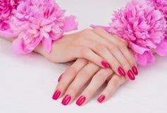 blommor manicure pink Arkivbilder