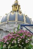 Blommor med bakgrund av stadshuset, San Francisco Arkivbild
