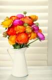 Blommor med solljus som kommer ut ur fönsterrullgardiner Royaltyfria Foton