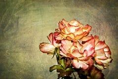 Blommor med textur Royaltyfri Foto