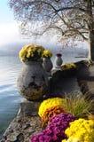 Blommor och Annecy sjö, i Frankrike Arkivfoto
