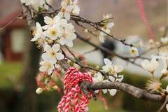 Blommor och band av minnet Royaltyfri Bild
