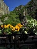 Blommor och berg i vår på den Matka kanjonen Arkivbild