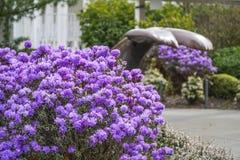 Blommor och bronsskulpturer på Seattle centrerar - SEATTLE/WASHINGTON - APRIL 11, 2017 Royaltyfria Foton