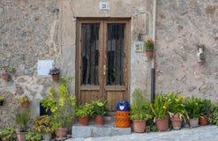Blommor och butangasflaska utanför dörr arkivbild
