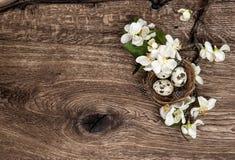 Blommor och easter bygga bo, ägg, träbakgrund Arkivbild