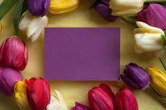 Blommor och ett ställe för text arkivbild
