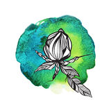 Blommor och fjädrar i boho utformar på vattenfärgbakgrund Arkivbild