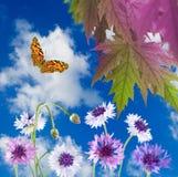Blommor och fjäril i den trädgårds- närbilden Royaltyfri Foto