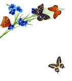 Blommor och fjärilar Arkivbilder
