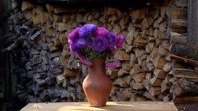 Blommor och frukter stock video