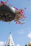 Blommor och gamla kyrkor av Kreml i Kolomna, Ryssland Arkivfoton